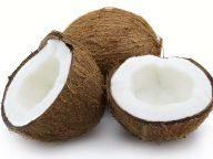 coconut2-768x576